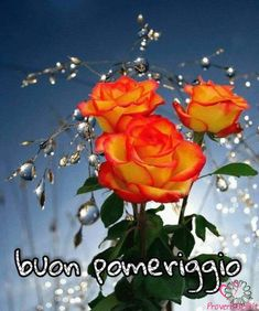 Buongiorno Divertenti Immagini Buon Pomeriggio Immagini ,  #buon #buongiorno #divertenti #immagini #pomeriggio Good Afternoon, Christmas Ornaments, Holiday Decor, Painting, Events, Living Alone, Frases, Dinner, Christmas Jewelry