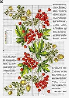 Jarzębina | Haft krzyżykowy - inspiracje i wzory
