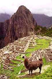 Machu Picchu, cité des nuages