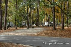 We camped here last year (2011) over Labor Day Weekend:  Myrtle Beach State Park