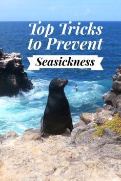 Best tips how to prevent sea sickness. From the seas surrounding the Galapagos Islands,  proven methods to help stop motion sickness