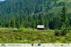 Wild Transylvania Forest House, Forests, Romania, Landscape Design, Mountains, Nature, Travel, Naturaleza, Viajes