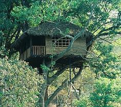 Hornbill River Resort - Dandeli - Karnataka