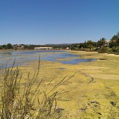 Ria Formosa, Quinta do Lago, Portugal