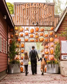 The Best Pumpkin Festivals to Visit This Fall: Celebrate the season with the whole family by visiting a regional festivals where pumpkins abound, food is aplenty, and adventures are all but guaranteed. Great Pumpkin Farm, Pumpkin Patch Farm, Best Pumpkin Patches, Pumpkin Carving, Fall Pumpkins, Halloween Pumpkins, Corn Maze, Halloween Town, Halloween Festival