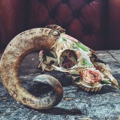 Rustic horned sheep skull which was ethically sourced >-> <-< Delicately collaged by hand with brilliant florals >-> <-< Metallic based gold
