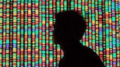Genome/colours