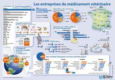 Infographies   SIMV
