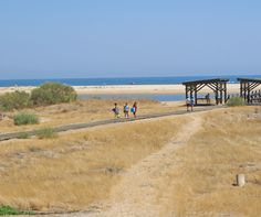 Playa Punta del Caiman. Isla Cristina (Huelva). Andalucia, Places To Go, Country Roads, Spaces, Beach, Water, Life, Outdoor, Beach Photography
