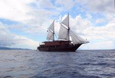 Raja Ampat, Indonesia, Fall 2007 (aboard Archipelago Adventurer II, luxury liveaboard that's worth every penny)