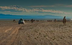 Mongolia and The Mongol Rally - via  @Dave Travel http://theplanetd.com/our-favourite-photos-of-2011-by-destination/