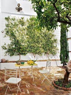 Designer Javier González Sánchez-Dalp rehabilitated this country house, a Moorish building of the century sited in Carmona, a town in Seville, Spain. Front Gardens, Outdoor Gardens, Casa Patio, Outdoor Spaces, Outdoor Decor, Outdoor Dining, Garden Inspiration, House Colors, Beautiful Gardens