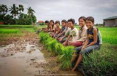 Cambodia Beauty love at the farm