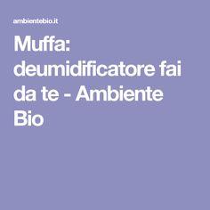 Muffa: deumidificatore fai da te - Ambiente Bio