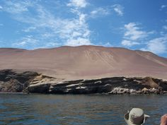 Paracas nature reserve, area of many birds and sea lions. By ATEDESO STORE. Sale of creative images with rights to raise funds.