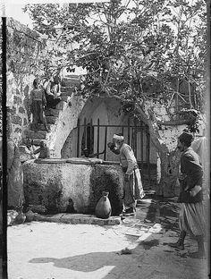 يافا/1928...