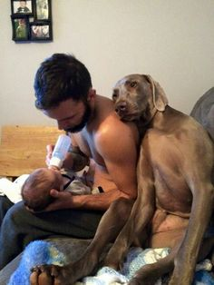 "Awe this is so precious!  Think the ""Fur Baby"" is hoping to be next!"