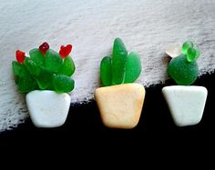 Original Design Magnets Succulents Genuine Sea Glass Sea Pottery Garden Art Hand Crafted Natural Eco Friendly Art