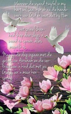 Môregroet. Good Morning Messages, Good Morning Quotes, Afrikaanse Quotes, Goeie Nag, Goeie More, Christianity, God, Wees, Inspiration