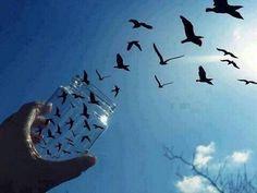 ビンから鳥がでていくような写真
