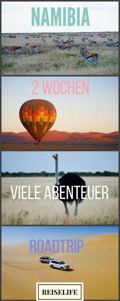 Alle Reisetipps für deine perfekte Namibia Rundreise. Route, Ausflüge, Safaritipps, Lodges - alles auf einen Blick!