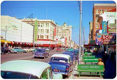 St. Petersburg, Florida, 1954.