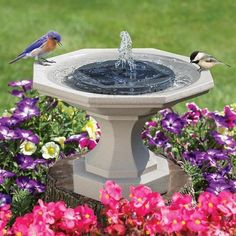 Solar Powered Fountain Pump, Solar Water Pump, Bird Bath Fountain, Bird Bath Garden, Fountain Lights, Diy Bird Bath, Garden Water Fountains, Water Garden, Fountain Garden