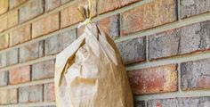 Jak se zaručeně zbavíte vos? Například pomocí papírového sáčku! Nafouknutý papírový sáček dokáže odehnat vosy do vzdálenosti pěti metrů.
