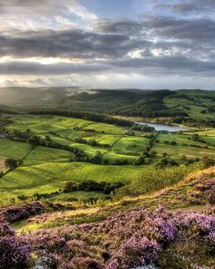 whatsthmattawyou: Morning sun over Macclesfield Forest by Pete Hyde on Flickr —  FUCKITANDMOVETOBRITAIN