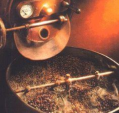 """Questa è storia!!! Negli anni si sono tramandate suggestive leggende sul caffè. Tra le più note leggende quella  dell' arcangelo Gabriele che aiutò il profeta Maometto, afflitto dalla malattia del sonno, con una tazza di bollente caffè. Dopo averla bevuta il profeta guarì miracolosamente sentendosi in grado di disarcionare quaranta cavalieri e di giacere con quaranta donne . L' oro verde"""", scoperto in Etiopia si diffuse in tutto il mondo islamico i cui abitanti, ne diventarono fervidi…"""