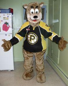 """Samboni"" - Providence Bruins Hockey Club"