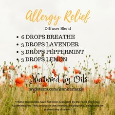 Essential Oils for Allergy Relief. Diffuser Blend.