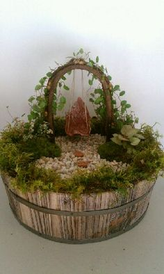 Batson's Foliage Group designed this fairy garden.  If you are looking to purchase miniature plants on a wholesale basis go to www.batsonsonline...  They have a great variety of miniature plants.  If you are looking for miniature fairy garden supplies go to www.wholesalefair...