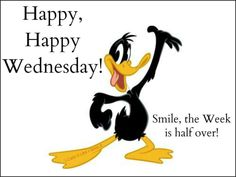 Good Night Quotes : QUOTATION – Image : Quotes Of the day – Description Happy, Happy Wednesday Daffy Duck weekday quote Sharing is Caring – Don't forget to share this quote ! Happy Hump Day Meme, Happy Wednesday Pictures, Wednesday Morning Quotes, Hump Day Quotes, Wednesday Coffee, Wednesday Greetings, Hump Day Humor, Wednesday Humor, Funny Happy