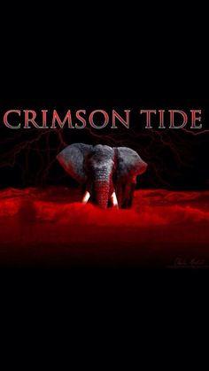 RTR Roll Tide Football, Crimson Tide Football, Alabama Football, College Football, Football Team, Alabama College, University Of Alabama, Alabama Wallpaper, Alabama Crimson Tide Logo