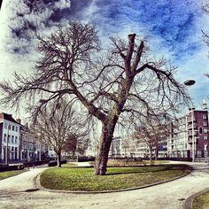 Eusebiusbuitensingel, Arnhem