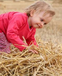 needle in a haystack -- good for little kids.. hide prizes in the hay and have kids look for them.