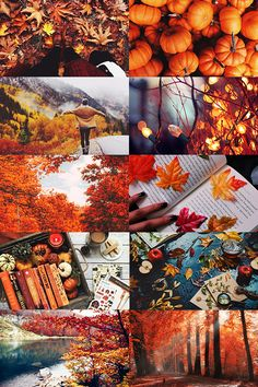 """call-me-winter-soldier: """"October 2016 aesthetic (more) """""""