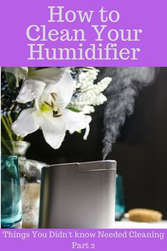 Things You Didn't Know Needed Cleaning: Your Humidifier