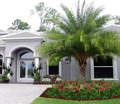 Florida Landscape Design Ideas find this pin and more on ideas for the house Landscaping Palms