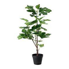 """Artificial plants & flowers - Plants, plant pots & stands - IKEA 23""""h"""
