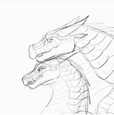 Fierceteeth and Strongwings Animal Sketches, Animal Drawings, Art Sketches, Art Drawings, Wings Of Fire Dragons, Cool Dragons, Dragon Poses, Fire Drawing, Dragon Sketch