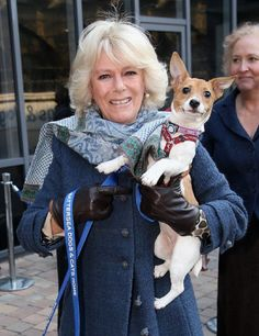 Camilla, Duchess of Cornwall and her 9 week old Jack Russell Terrier Bluebell