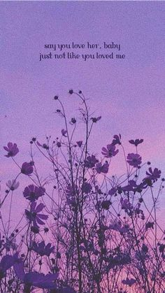 happier   sunflowersrain