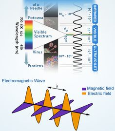 Electromagnetic Spectrum and Electromagnetic Wave