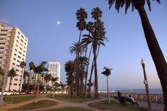 Santa Monica, CA by Katina Houvouras