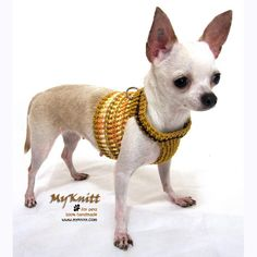 Christmas Gifts Dog Harness Vest Crochet Clothing Pets by myknitt, $20.00