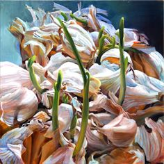 Sprouted Garlic - Andréa Kantrowitz