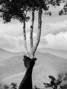 Juxtapoz Magazine - Arno Rafael Minkkinen Integrates His Body Into the Natural Landscape Arno, Museum Of Fine Arts, Museum Of Modern Art, White Photography, Landscape Photography, Photography Magazine, Creative Photography, Forest Photography, Conceptual Photography