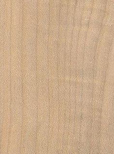 Woods to Know: Bigleaf Maple - Canadian Woodworking Magazine